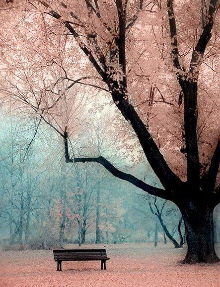 paysage mauve vert.jpg
