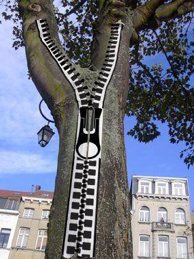 arbre fermeture éclair.jpg