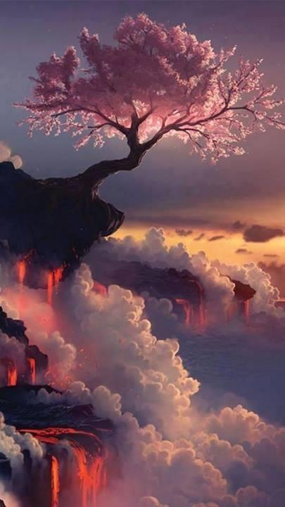 arbre surplombant volcan japon.jpg