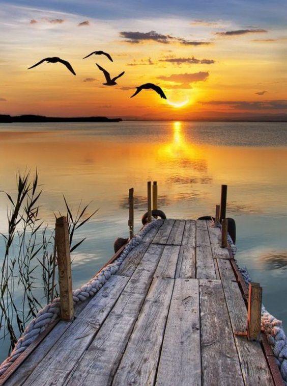 ponton coucher soleil.jpg