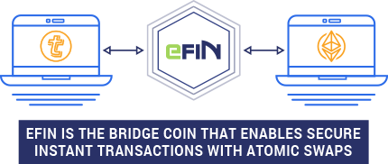 efin_bridge.png