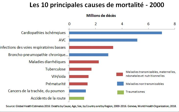 10-main-causes-death-2000-fr26e38074df56496b87606d92e6649c6e.jpg