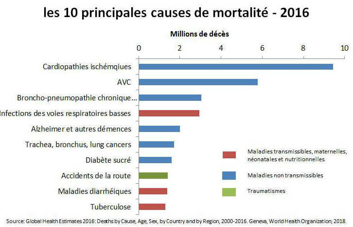10-main-causes-death-2016-fr.jpg