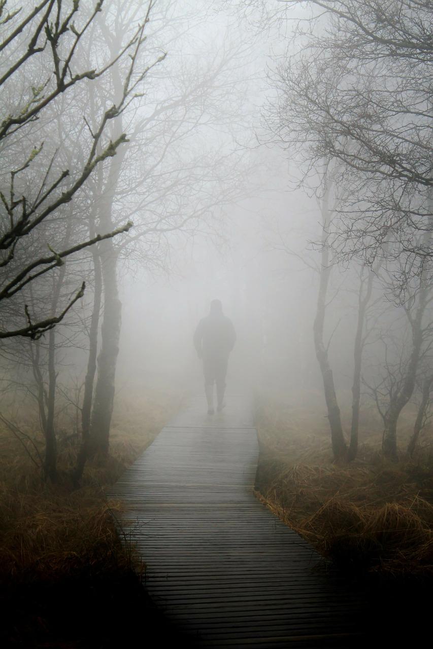 fog-267978_1280.jpg