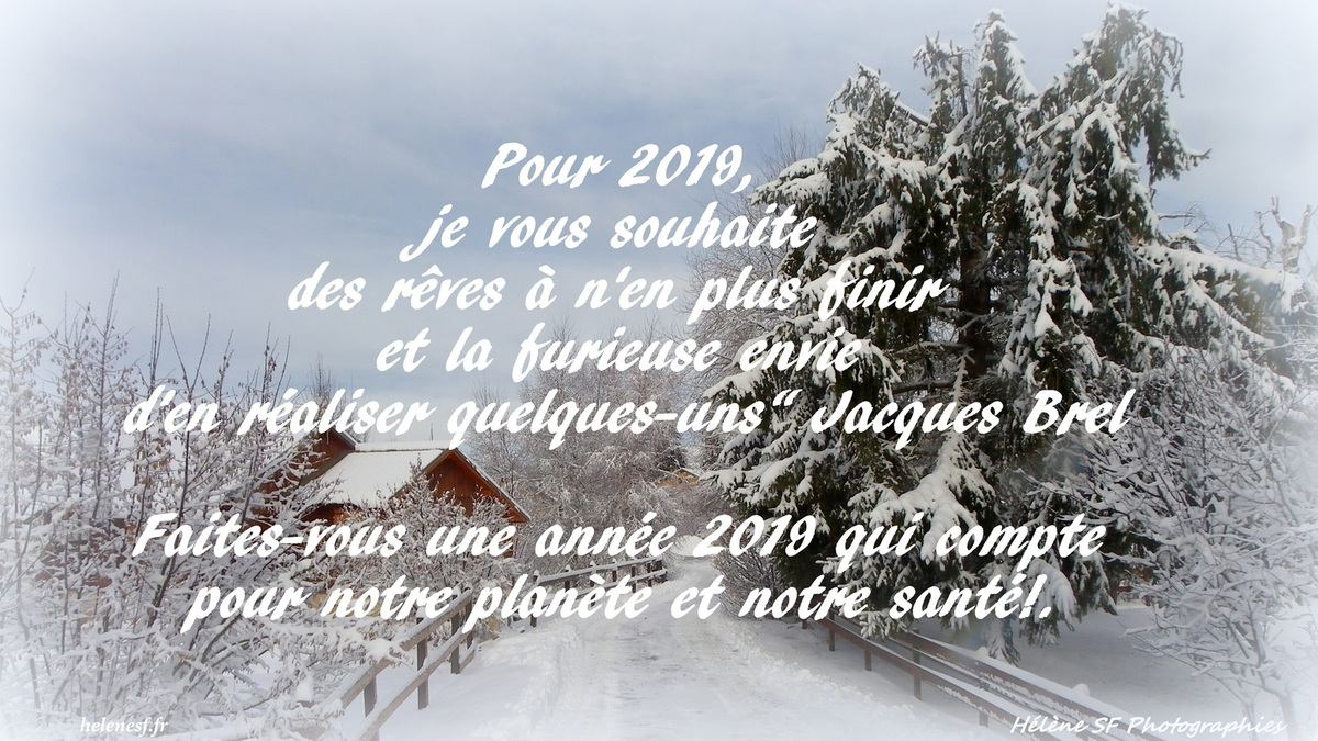 ob_57fa64_carte-bonne-annee-2019-citation-jacqu[1].jpg