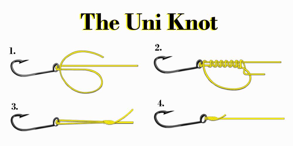 uni-knot.jpg