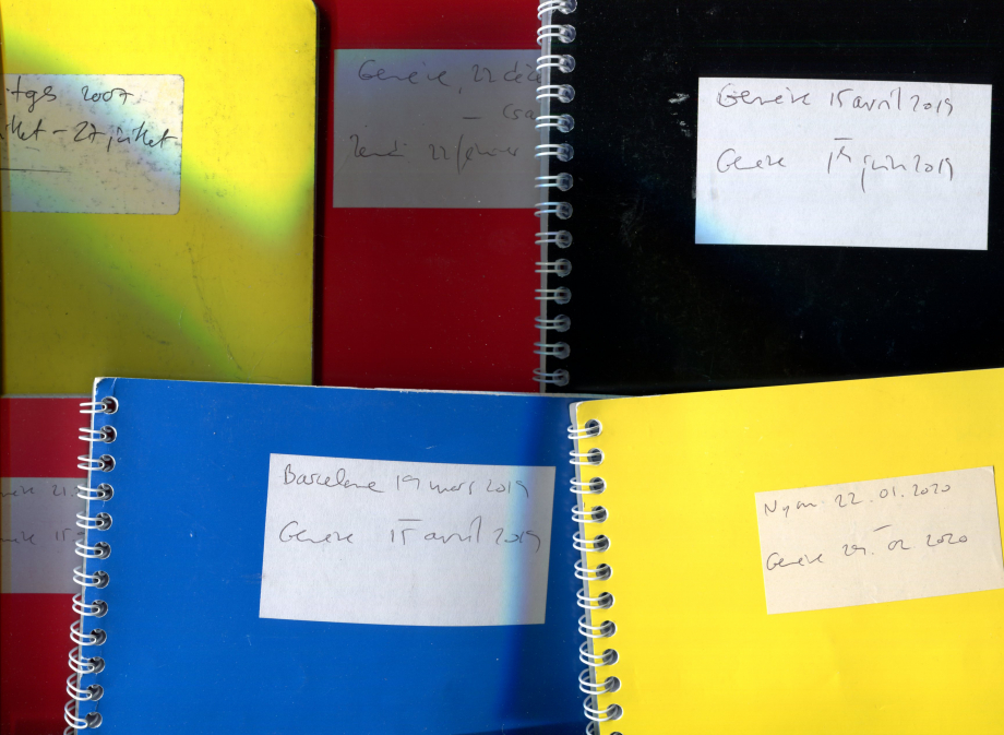 Belluz journal vagabond cahiers.jpg