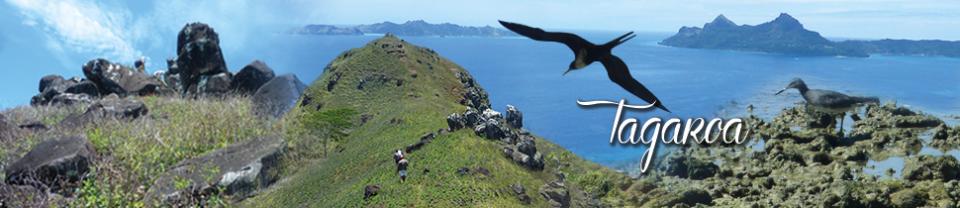 Les îles Gambier, un Musée d'Histoire pour l'Océanie
