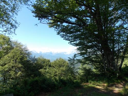DSCN1082 paysage du col de la Crouzette.JPG