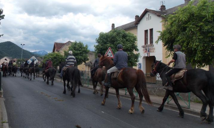 Moulis chevaux1.PNG