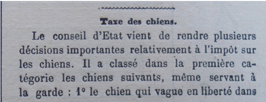 taxe chiens 1.PNG