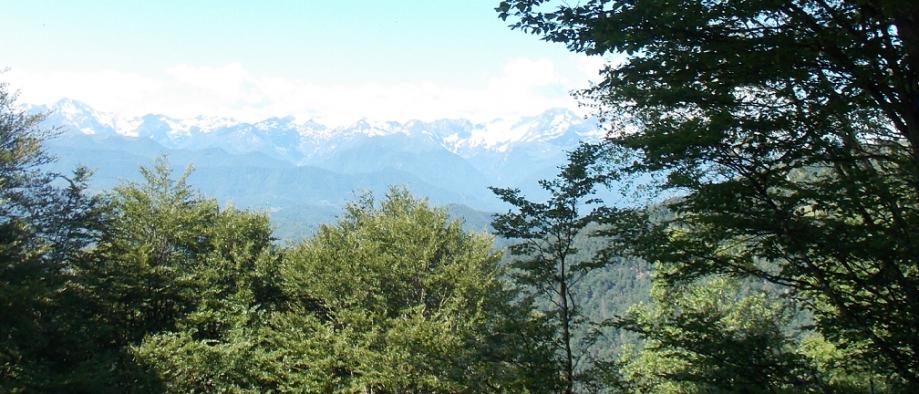 paysage 2 col de la Crouzette + petit.png