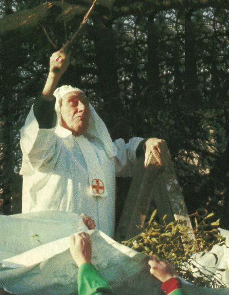 Le Grand Druide Bod Koad