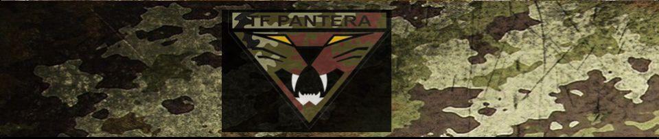 TASK FORCE PANTERA