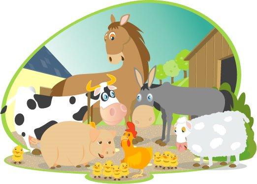 Animaux-de-la-ferme-vache-cochon-cheval-anne-mouton-coq-poussin-Camenbert-Normandie-France-Europe.jpg