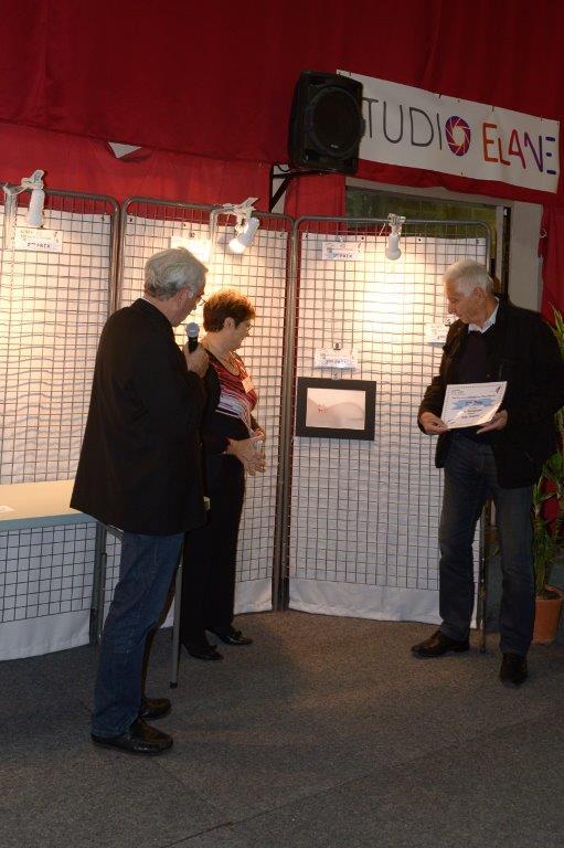 Salon des artistes Villecresnes 2015-5424.jpg