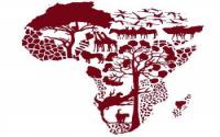 Afrique par ci, Afrique par là...