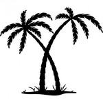 stickers-palmiers-livraison.jpg