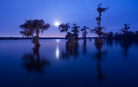 Swamp-Blues-Lightnin-Slim-photo-ChrisLitherland-LakeMartin-300x190.jpg