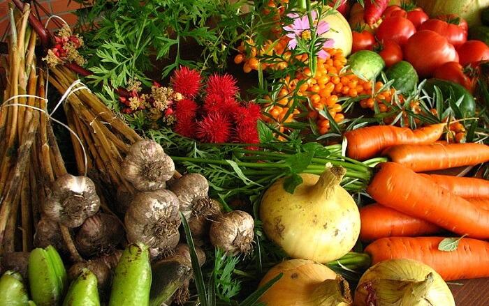 dechets-alimentaires-supermarches-1.jpg