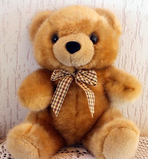 teddy-424630_1280.jpg