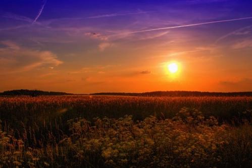 summer-789974_640(1).jpg