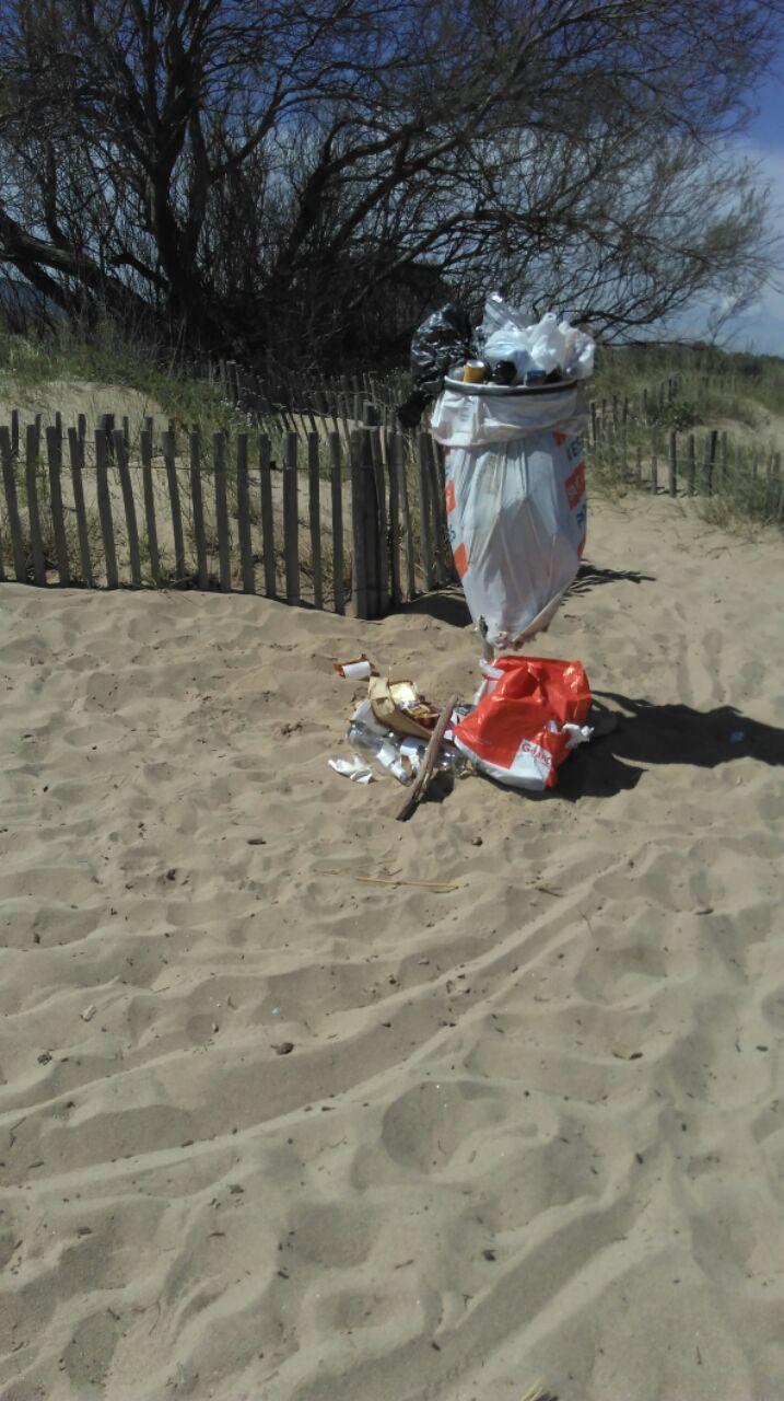 plage 12-04-16.jpg