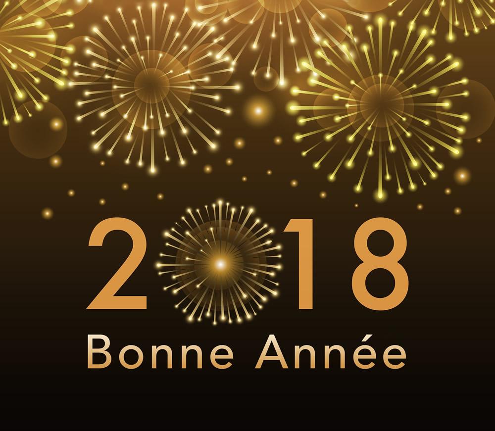 bonne-annee_076.jpg