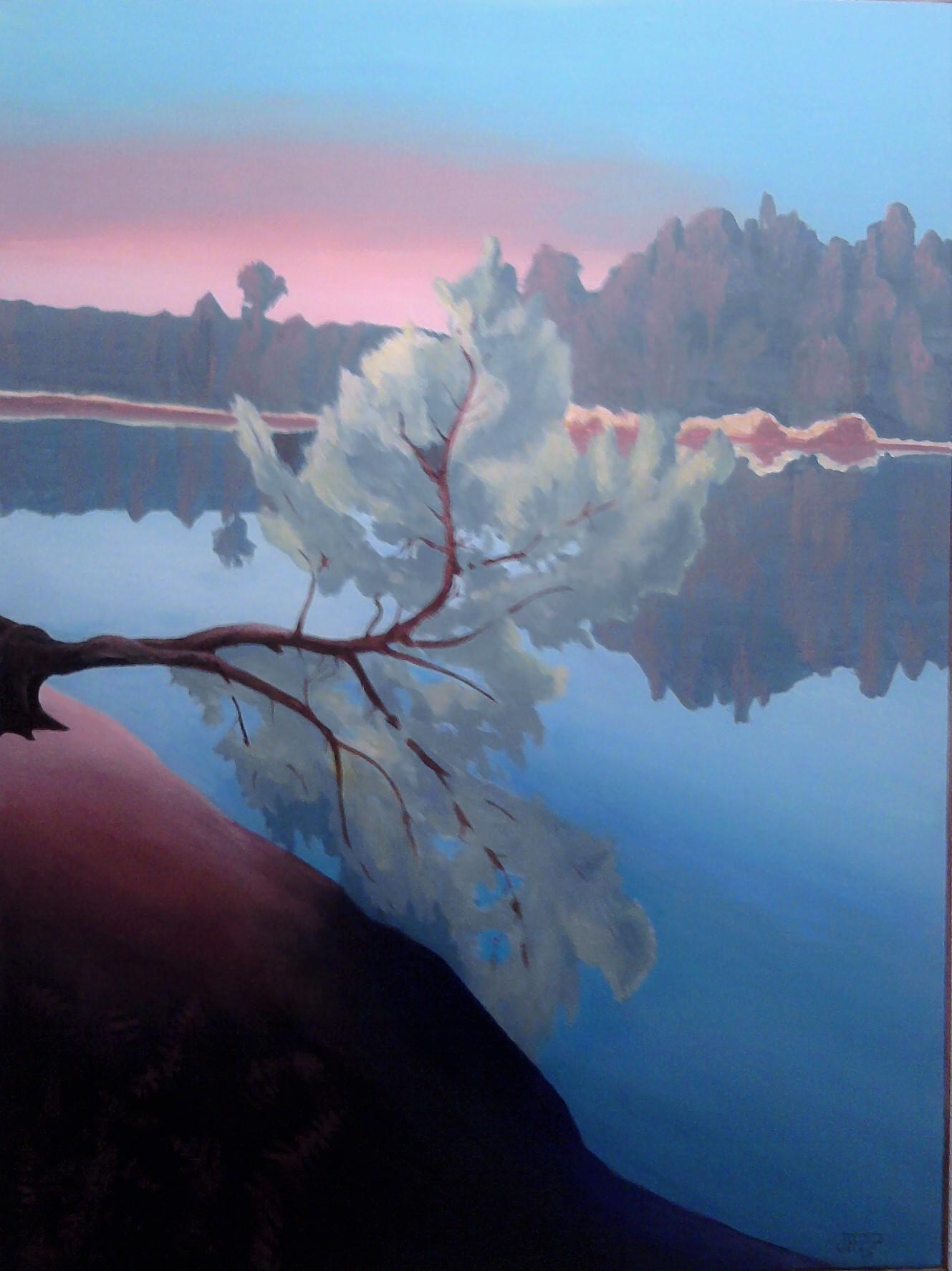 reflets lagune.jpg
