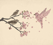 art-birds-branch-finch-flowers-illustration-48455.jpg