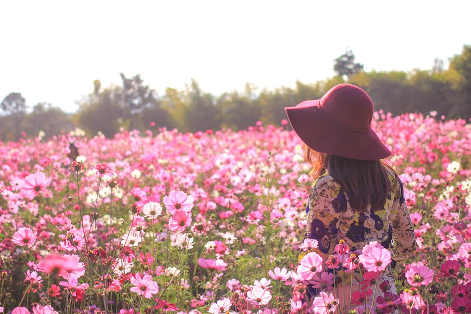 Mujer-en-campo-de-flores.jpg