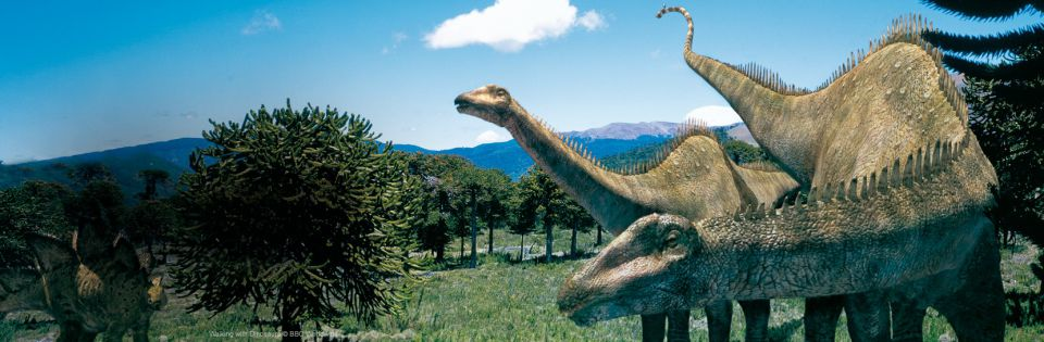 Dino'Troc