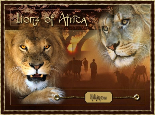 Lions of Africa sign.jpg