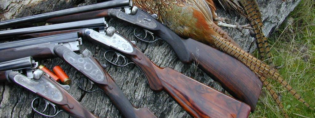 Réflexions sur  la chasse et ses armes