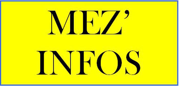 LOGO MEZINFOS