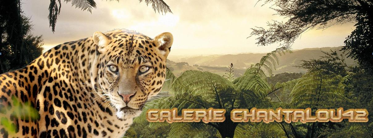 GALERIE Chantalou42