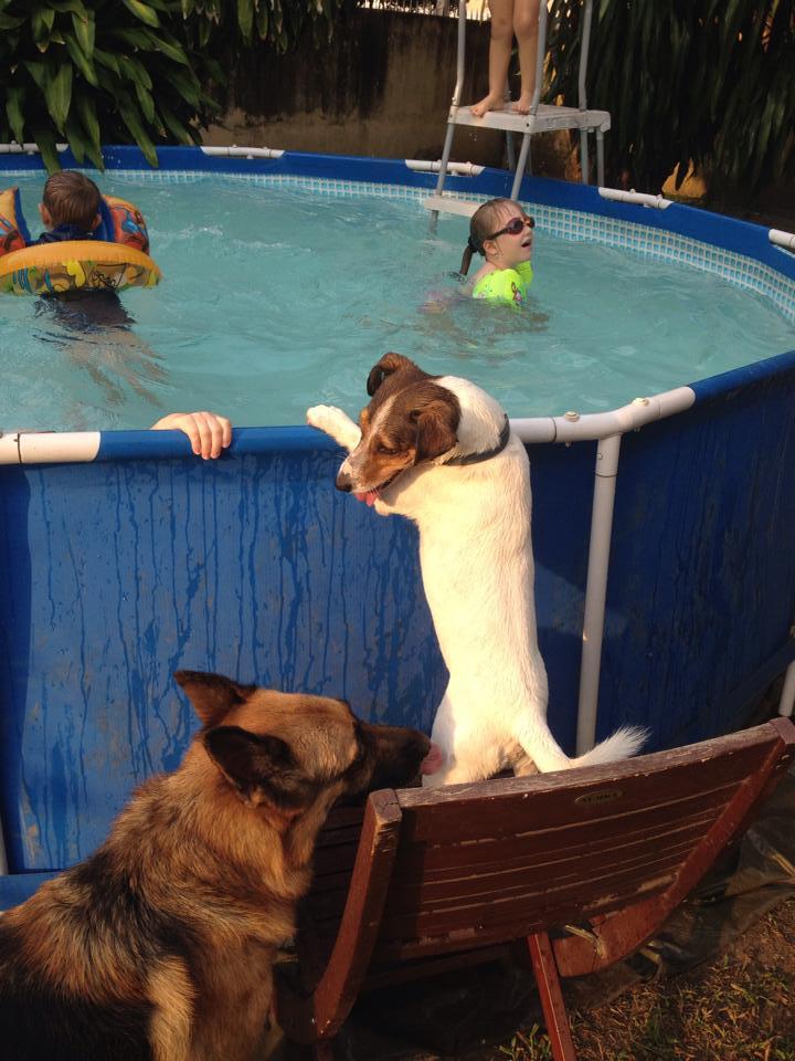 haston piscine.jpg
