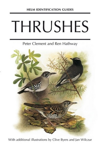 Thrushes couverture (Copier).jpg