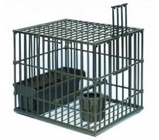 cage beretti 1 (Copier).jpg