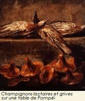 Grives et lactaires Pompei (Copier).jpg