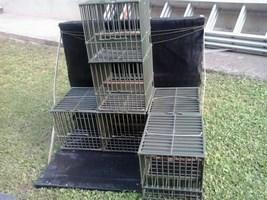 Porte cages artisanal (Copier).jpg