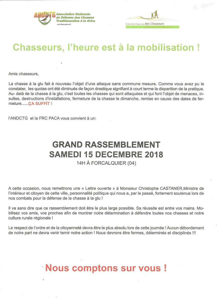 Rassemblement Forcalquier (Copier).jpg