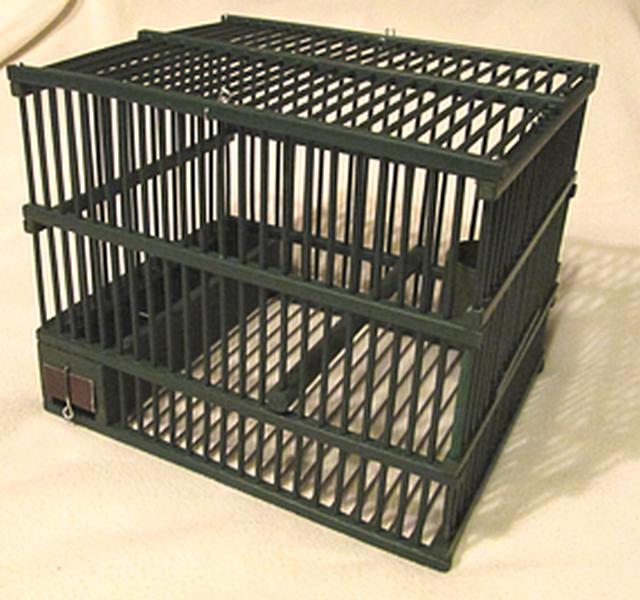 cage barreaux rapprochés (Copier).png
