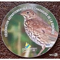 FDC Gironde musiciennes (Copier).jpg