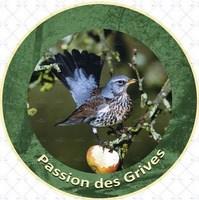 Passion des grives (Copier).jpg