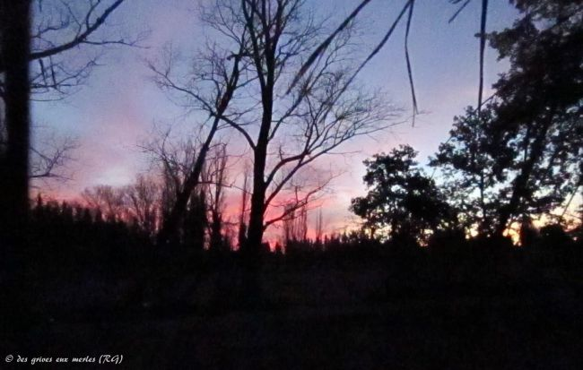 Sénas (13), lever du soleil.