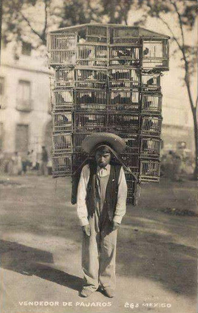 Le marchand d'oiseaux (Mexique).