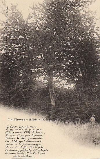 La forêt en Nivernais, l'affût aux merles.