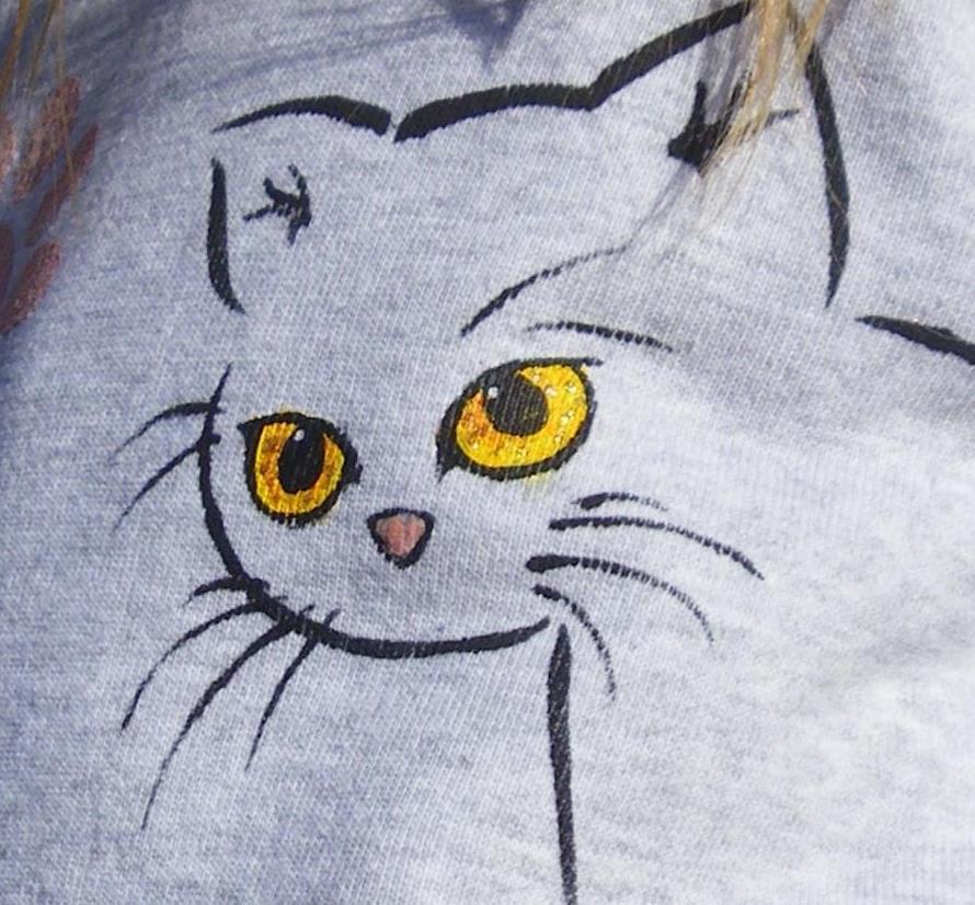le-chat-et-le-soleil-detail.jpg