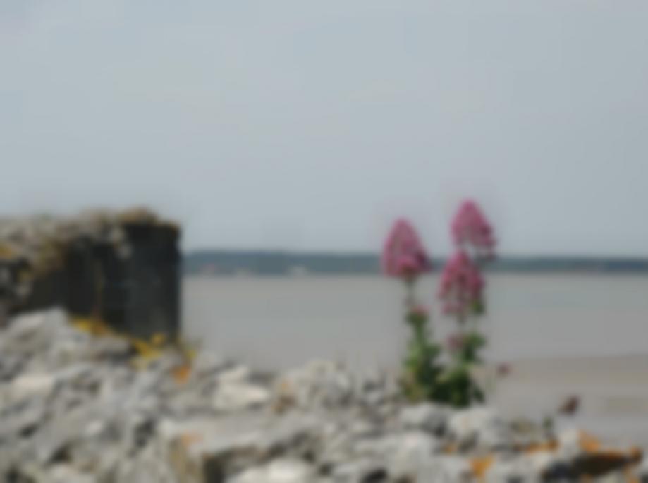 DSCN2751_citadelle-de-Blaye_P.jpg